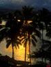 hawaii_vert_03.jpg