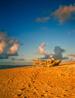 hawaii_vert_11.jpg