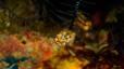 undersea_12.jpg